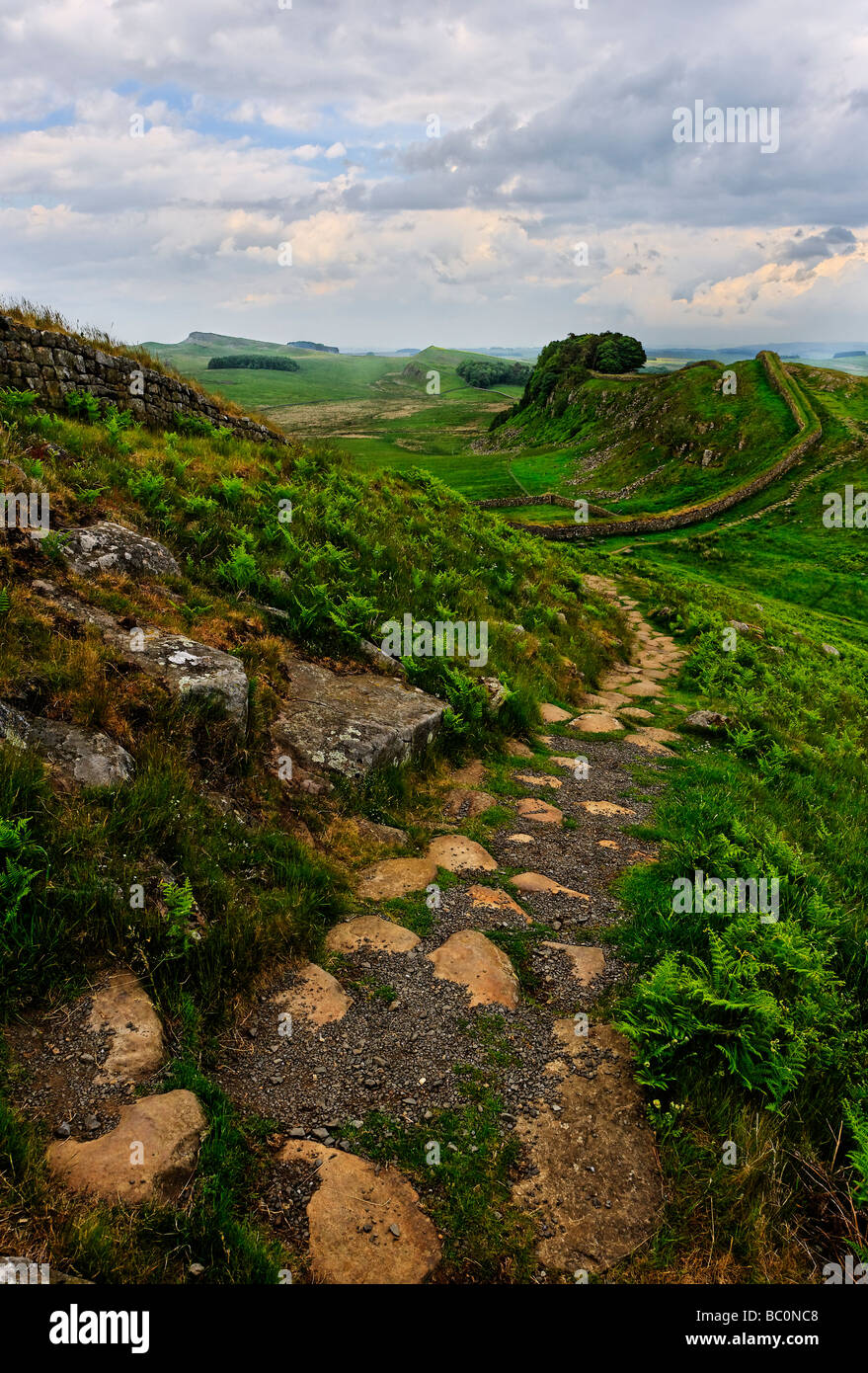 Looking east over a combined stretch of the Hadrian's Wall path and Pennine Way long distance footpaths in Northumberland - Stock Image