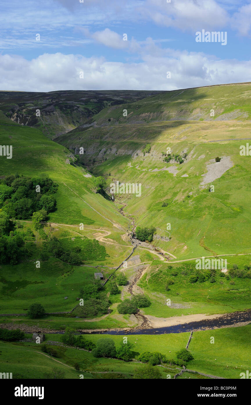 The Pennine Way footpath takes a line along the side of Kisdon Hill between Muker and Keld in Swaledale in the Yorkshire - Stock Image