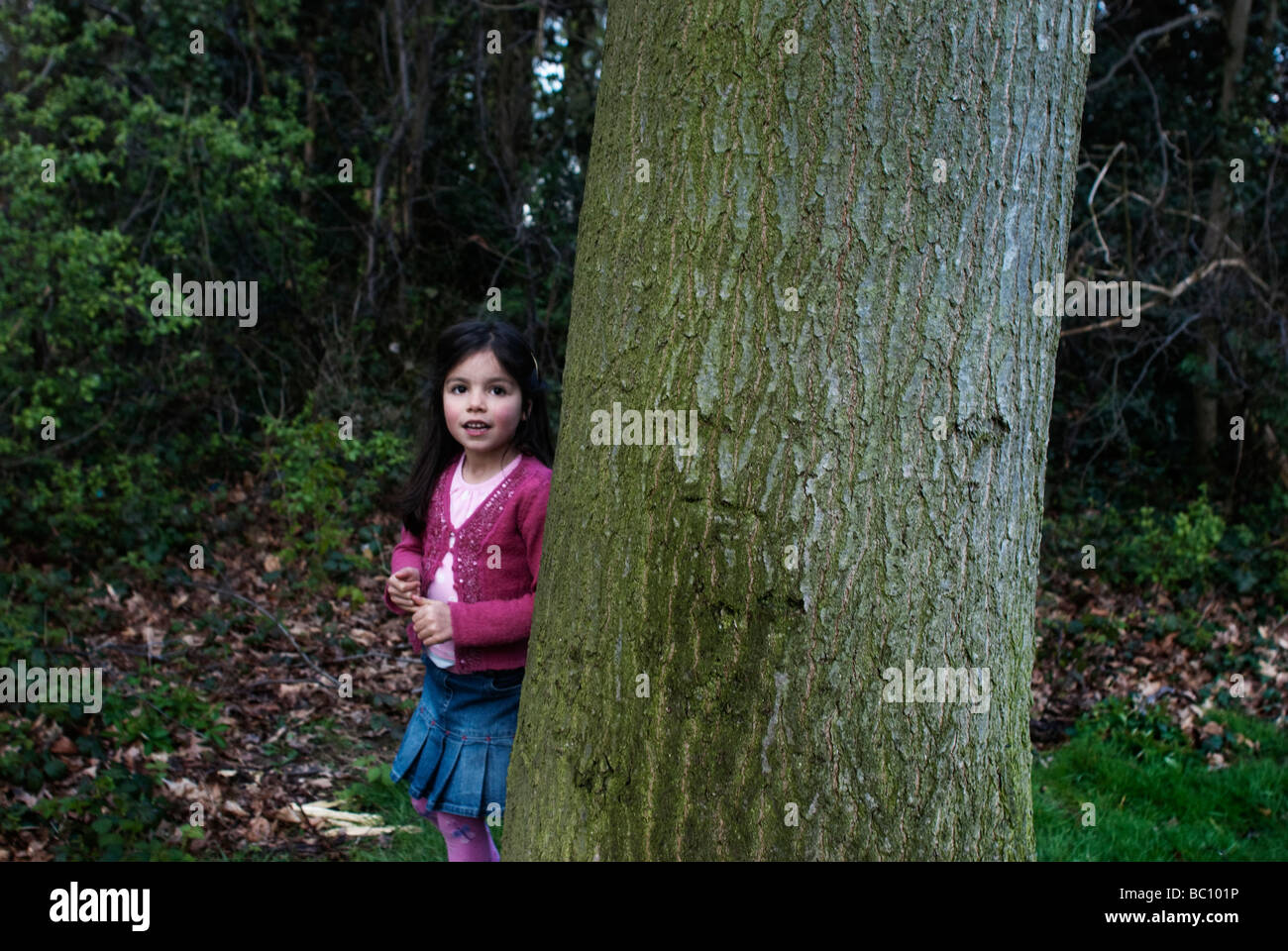 Child plays hide and seek - Stock Image