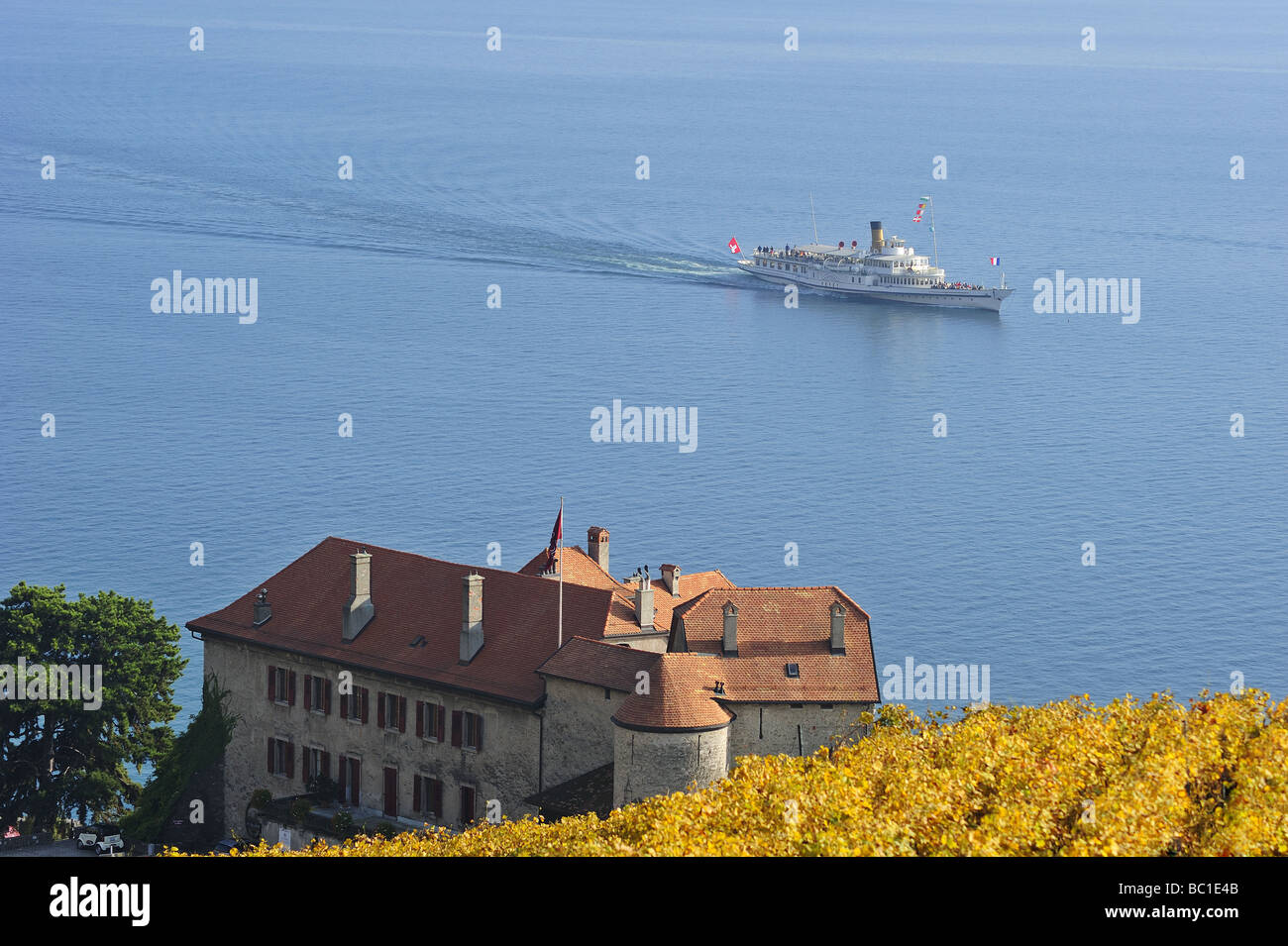 The Swiss paddle steamer 'Vevey' passing a chateau and vineyards on the shores of  Lac Leman (Lake Geneva), - Stock Image