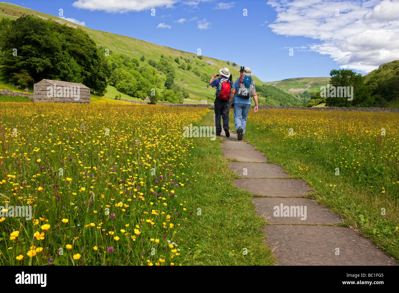 Walking through the flower filled summer hay meadows at Muker, Swaledale in the Yorkshire Dales - Stock Image
