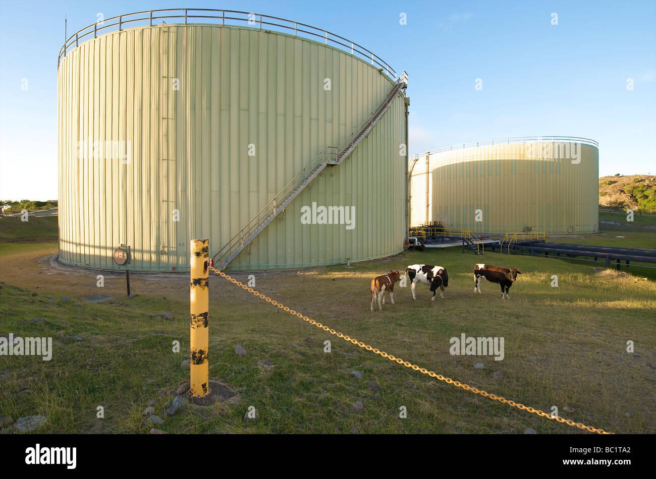 Sint Eustatius terminals of Statia Oil - Stock Image