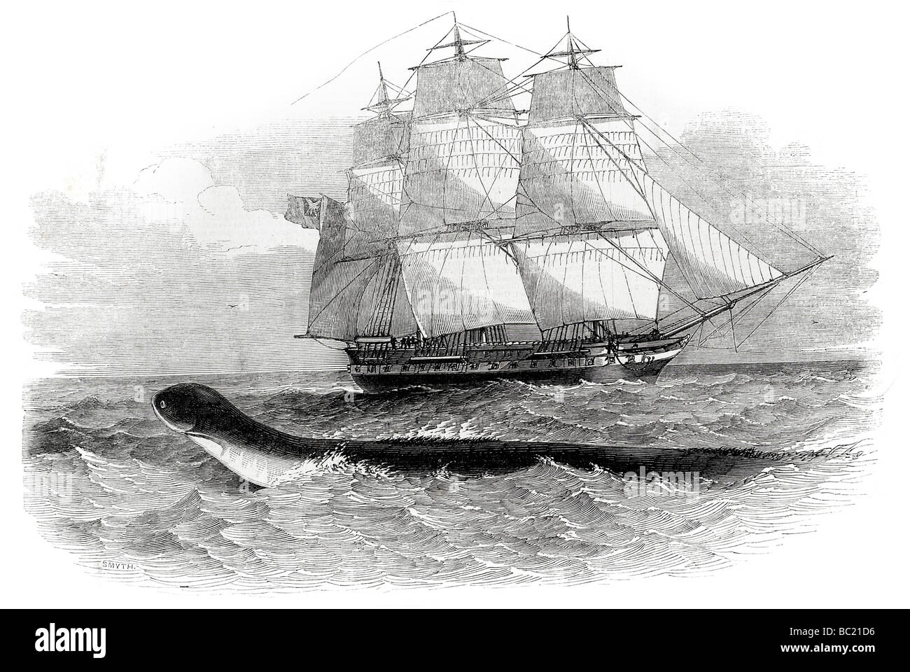 the sea serpent when first seen from h m s daedalus - Stock Image