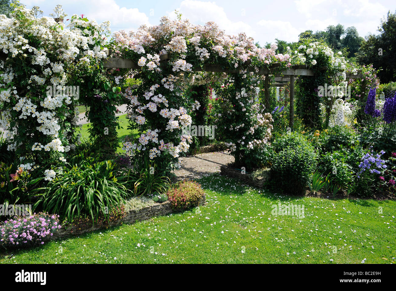 Genial English Garden With Roses On A Pergola, In Somerset