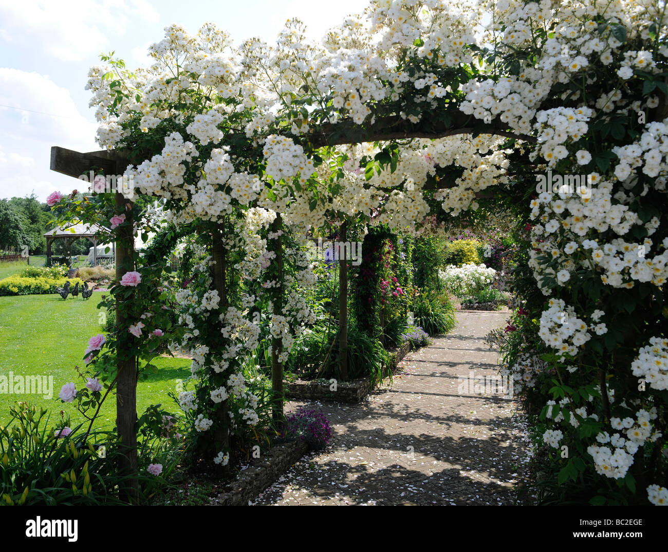 Superieur English Garden With Roses On A Pergola, In Somerset