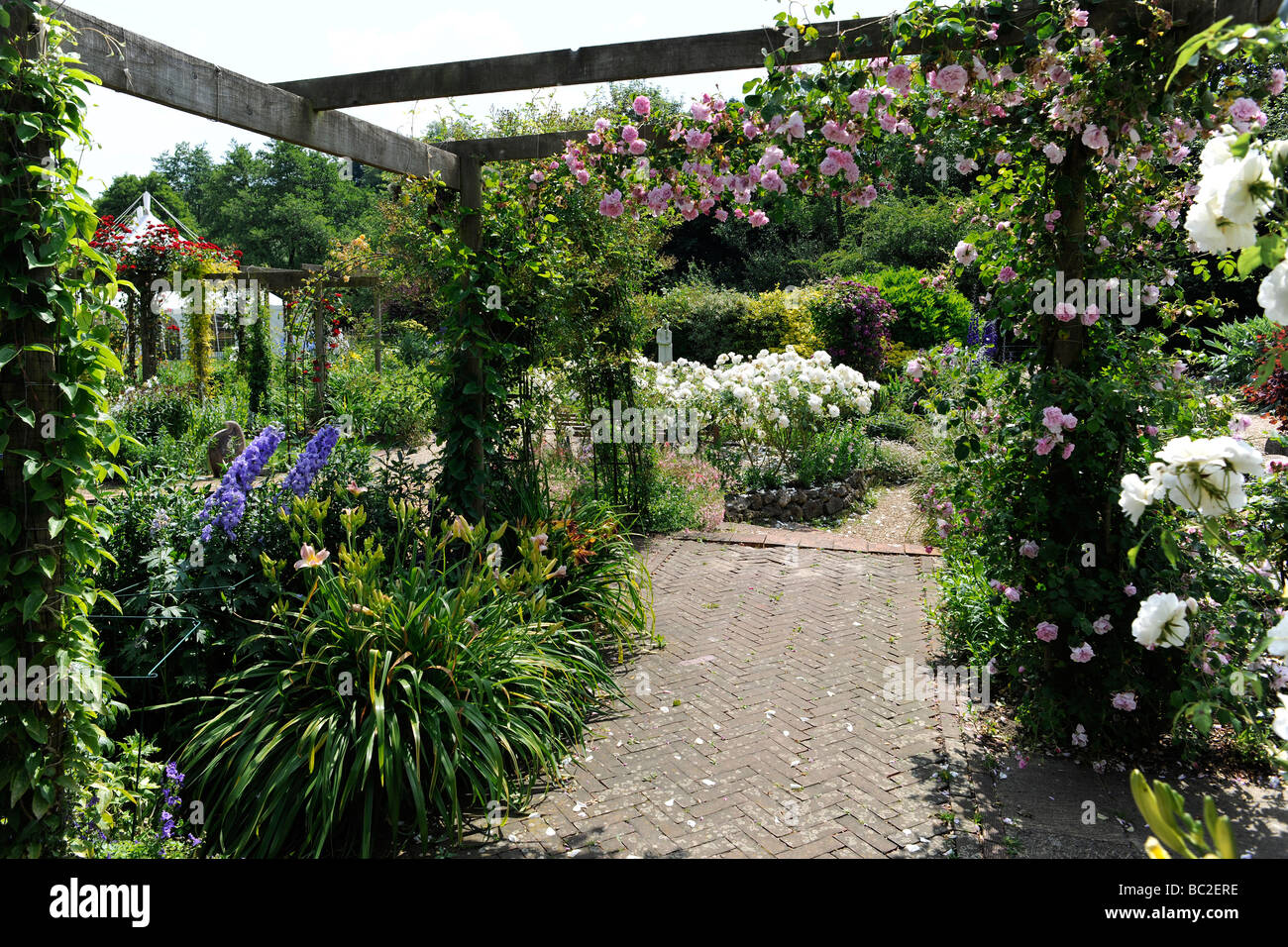 Charmant English Garden With Roses On A Pergola, In Somerset