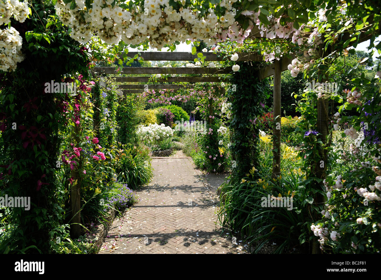 Beau English Garden With Roses On A Pergola, In Somerset