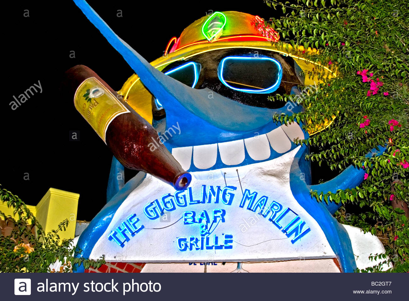 Goofy neon sign for the Giggling Marlin Bar and Grille in Cabo San Lucas Mexico. Editorial use only. - Stock Image