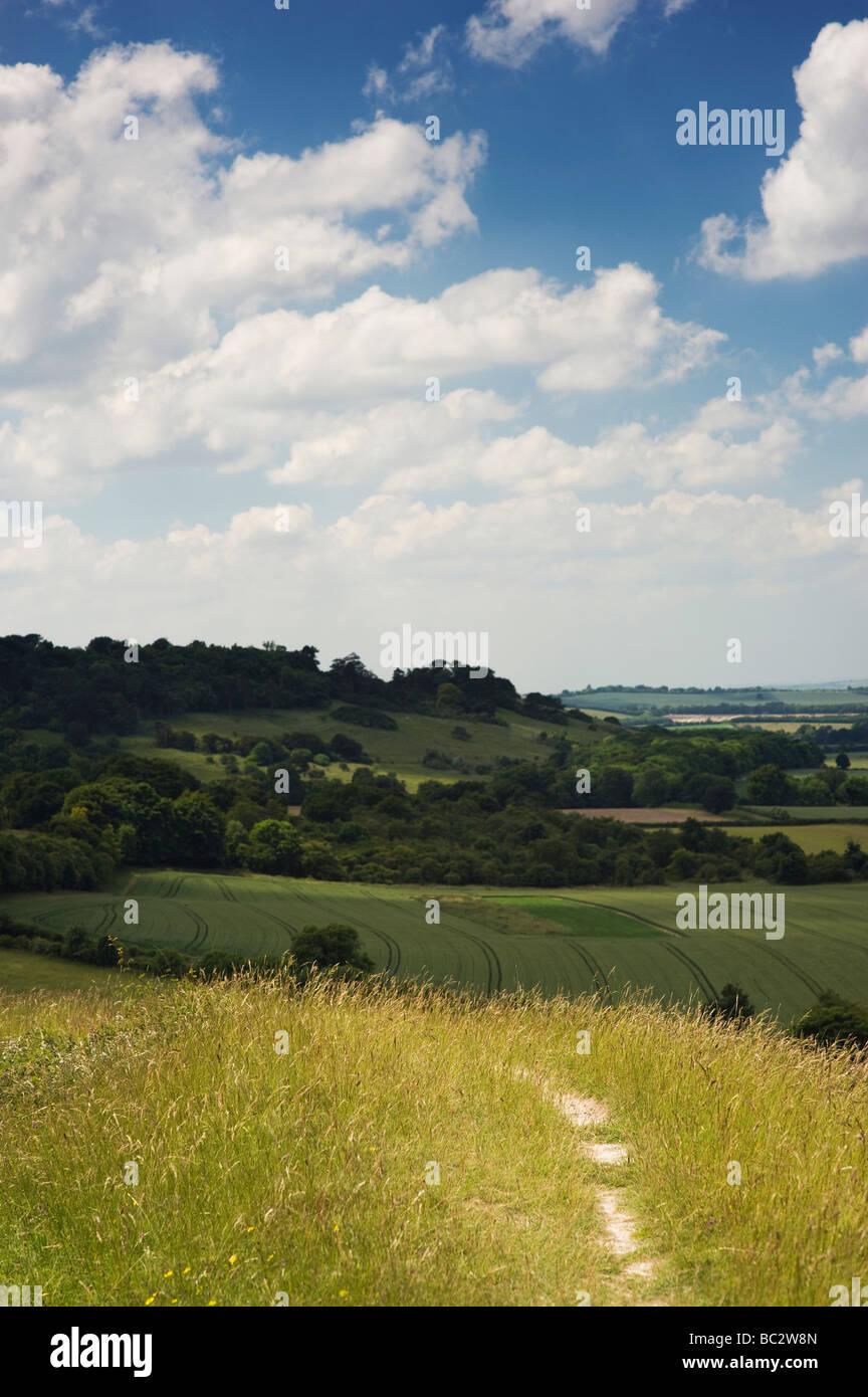 Chalk pathway on Chiltern hills. Aston Rowent , The Chilterns, Buckinghamshire, England - Stock Image