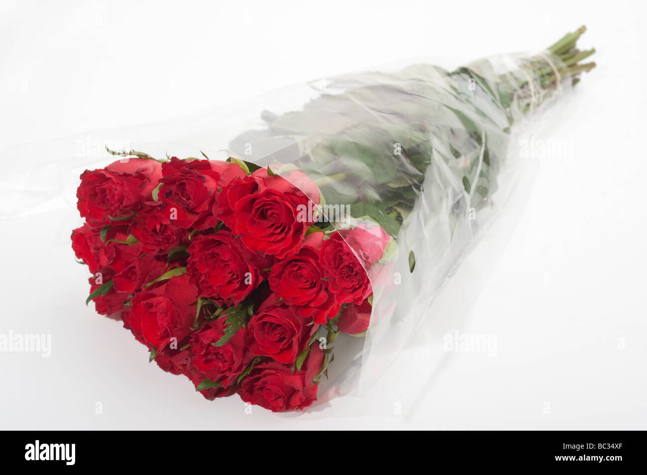 Bunch of red roses wrapped in clear cellophane Stock Photo: 24655975 ...