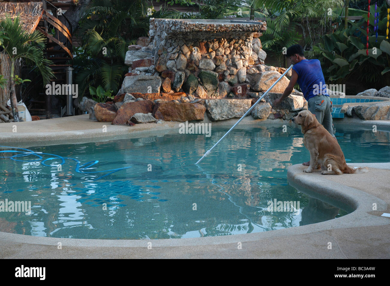 Kidney Shaped Pool Stock Photos Kidney Shaped Pool Stock Images