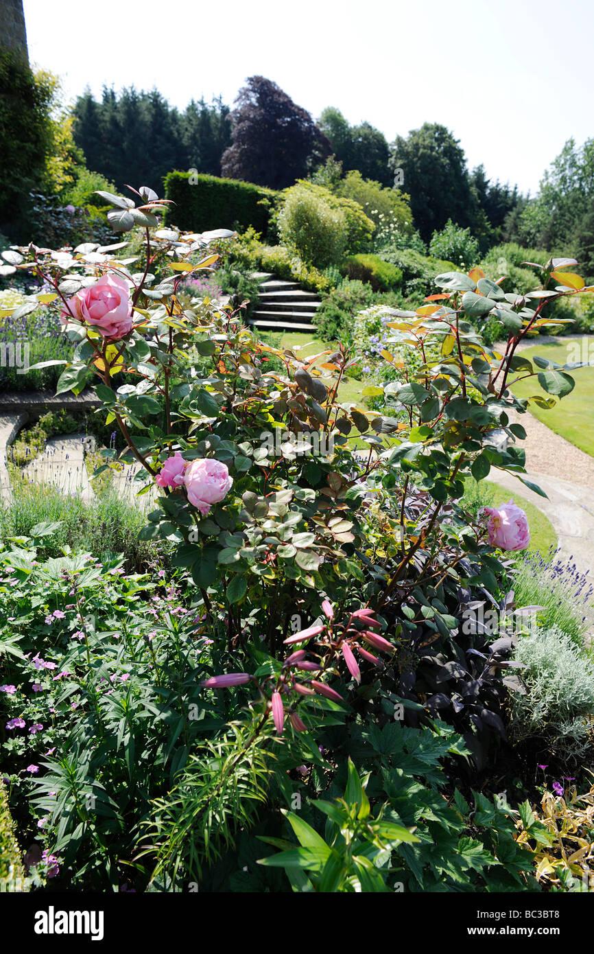 Landscaped English Garden in Somerset, UK - Stock Image