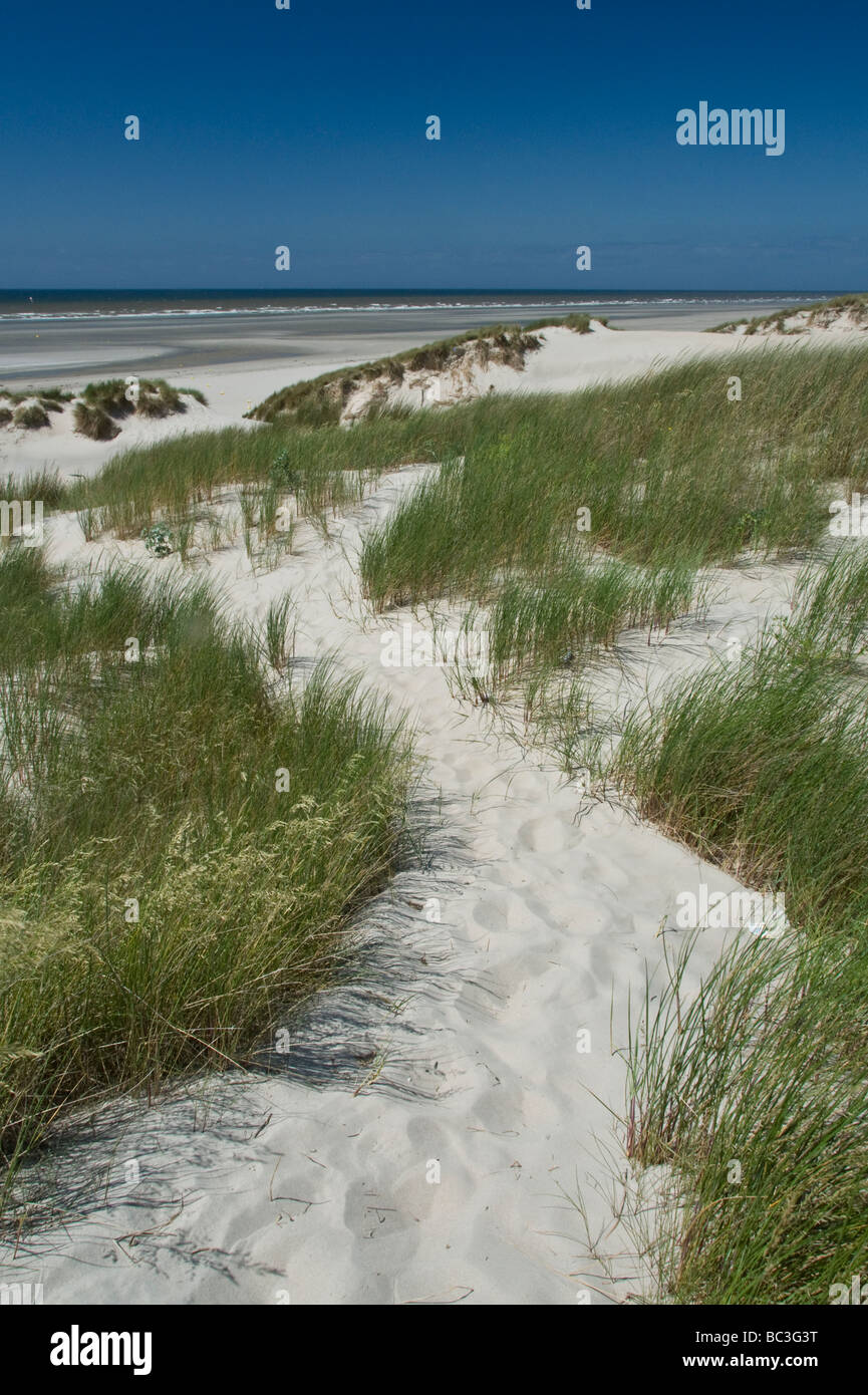 White sand beach of Le Touquet Northern France - Stock Image