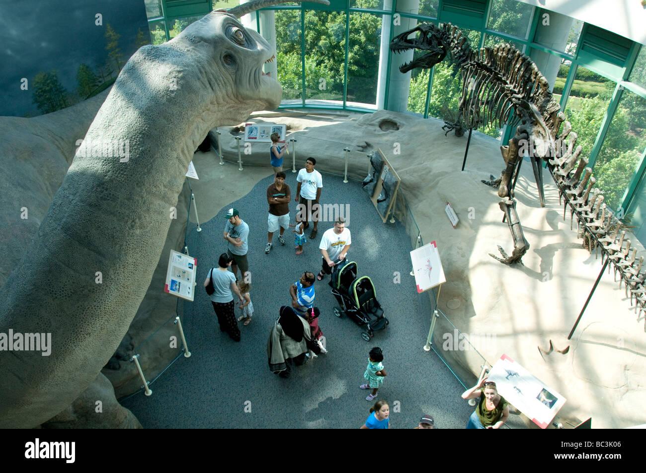 North Carolina Museum of Natural Sciences. - Stock Image