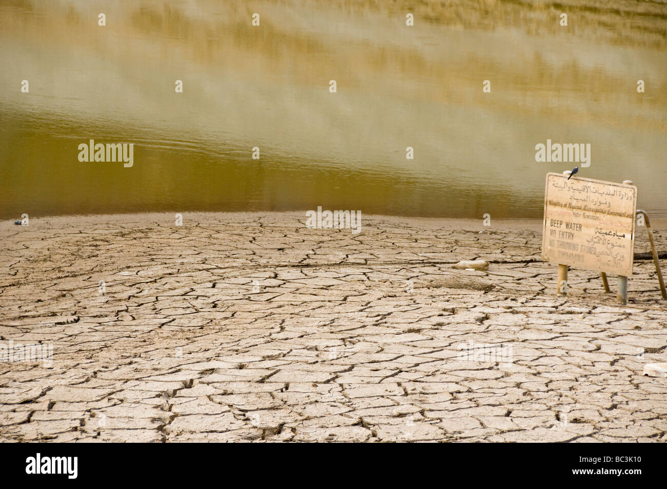 Dried out Wadi in Oman - Stock Image