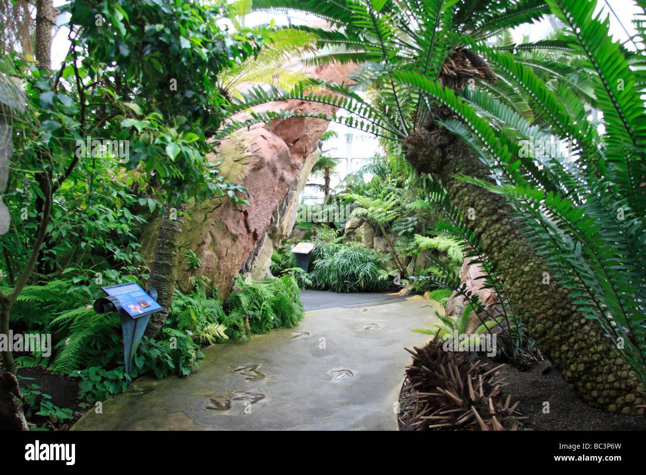View inside Evolution House, The Royal Botanic Gardens, Kew, Surrey, England. - Stock Image