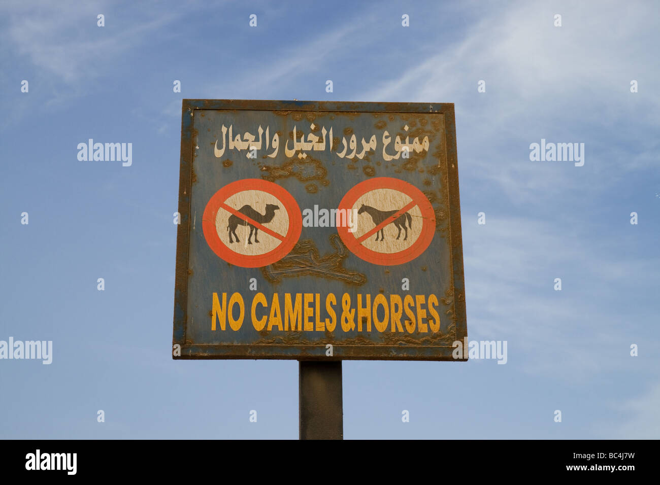 no camels or horses signal in Dahab, Gulf of Aqaba, South Sinai Peninsula, Egypt - Stock Image