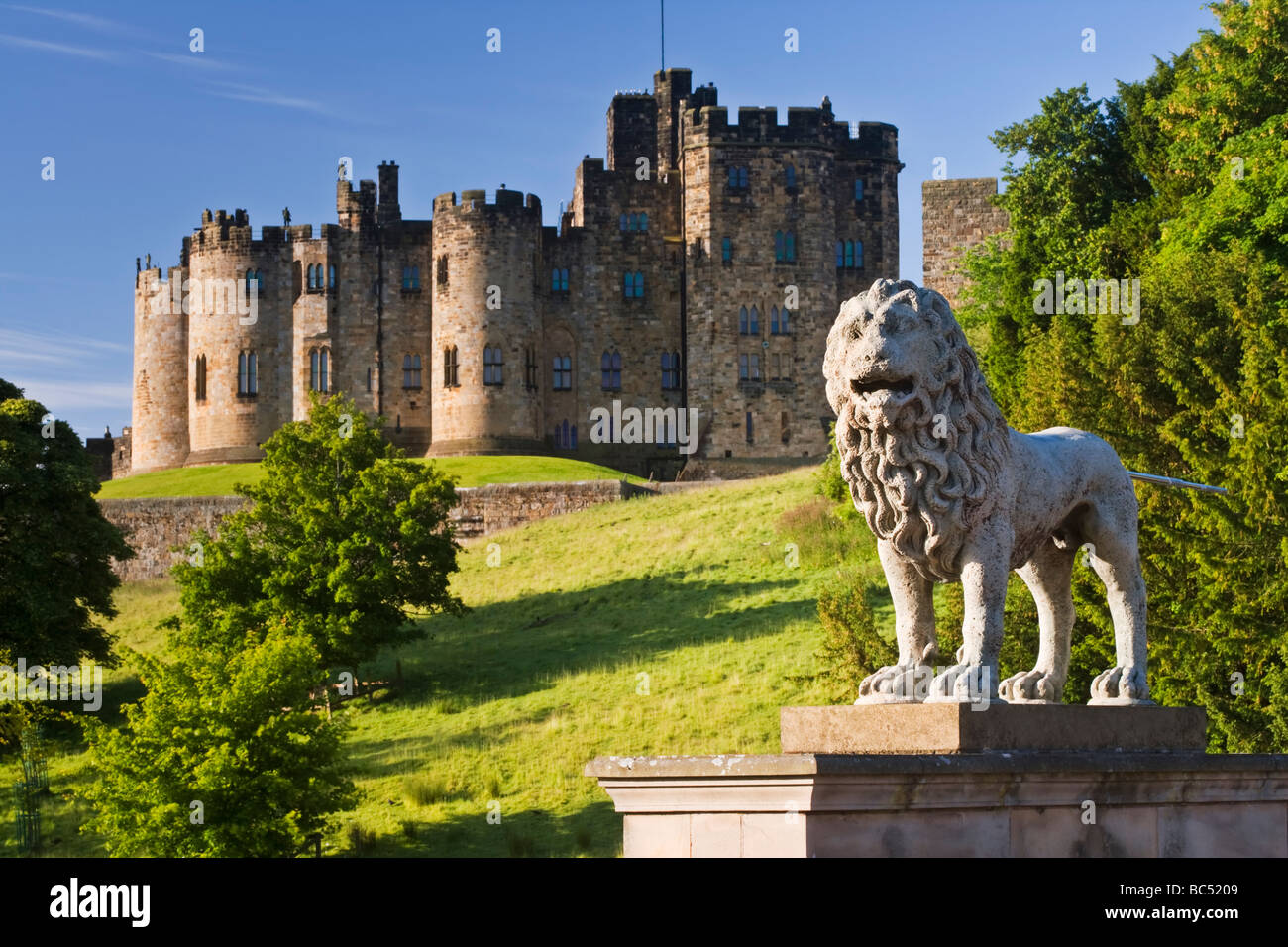 Carved lion on a bridge over the river Aln leading to the town of Alnwick Northumberland, England. Behind is Alnwick - Stock Image