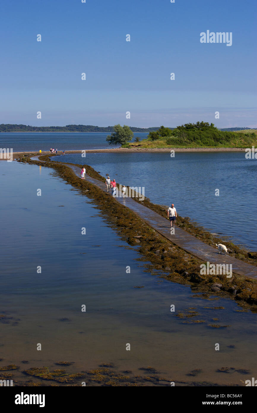 tourists walking concrete causeway at low tide to rough island from island hill near comber in strangford lough - Stock Image