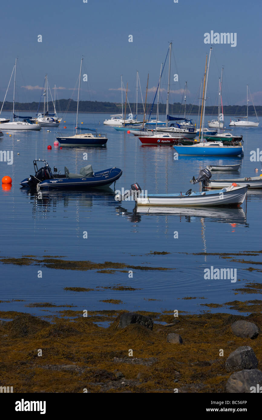 boats and yachts moored in one of strangford loughs many inlets county down northern ireland uk - Stock Image