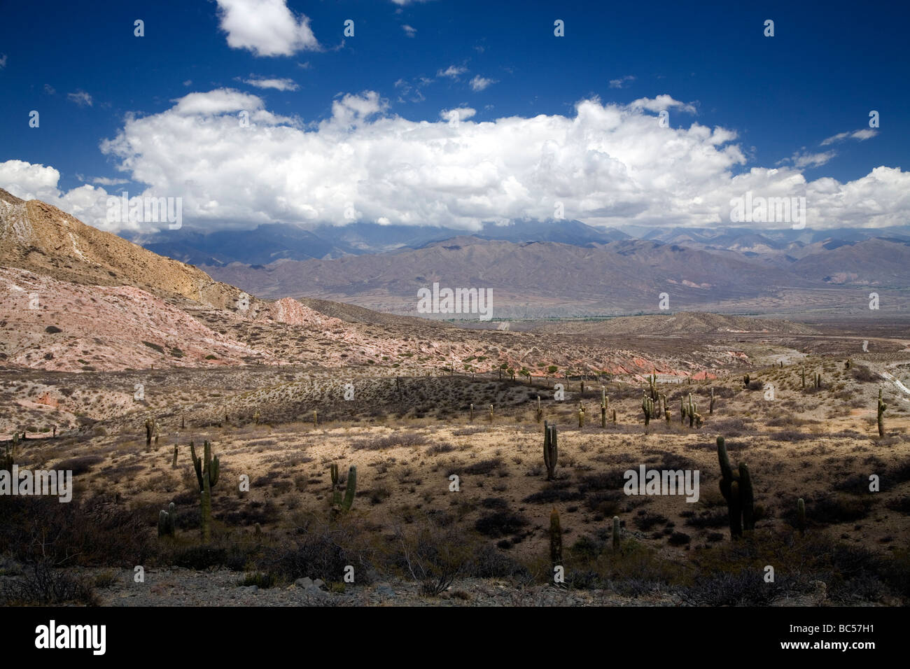 Route 40 between Cachi and Payogasta, Argentina - Stock Image