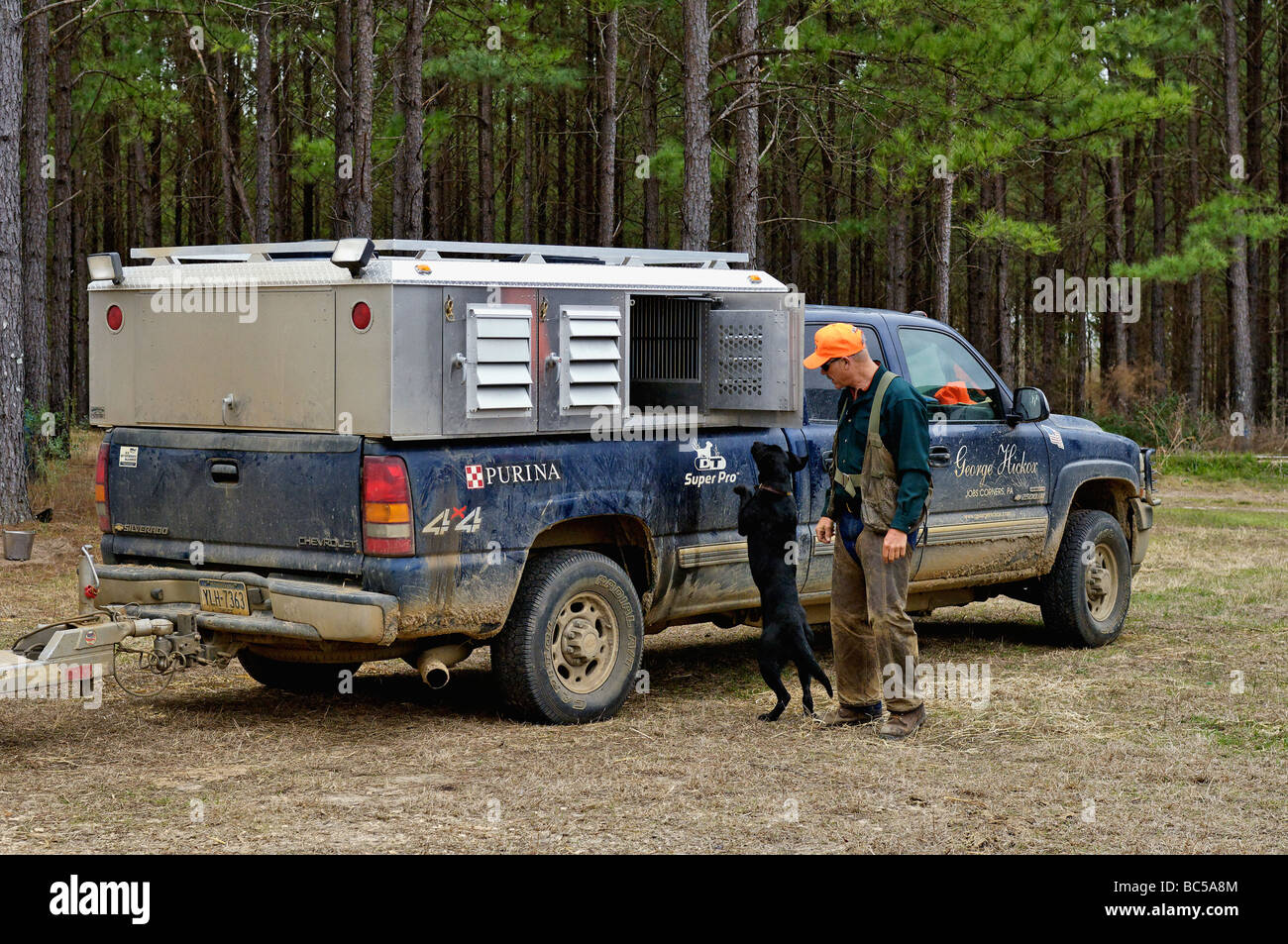 Dog Trainer George Hickox with Labrador Retriever at Hunting Rig in the Piney Woods of Georgia - Stock Image