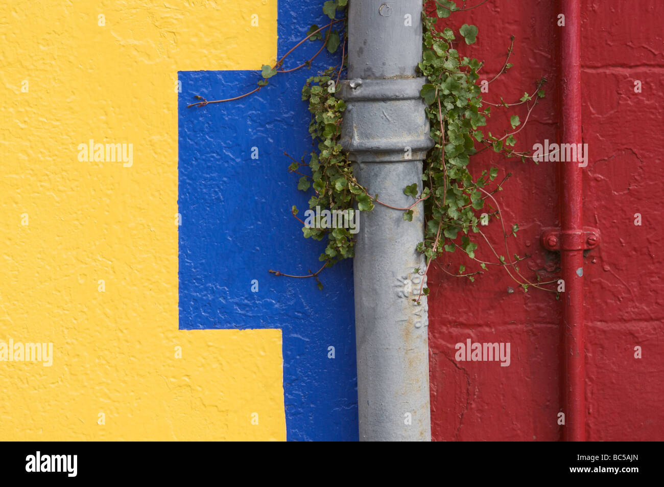 Drainpipe and painted wall, Tobermory, Mull, Scotland - Stock Image