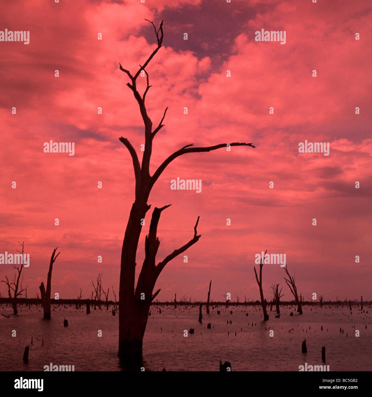 Lake Mulwalla Sunrise,Victoria,Australia. Stock Photo