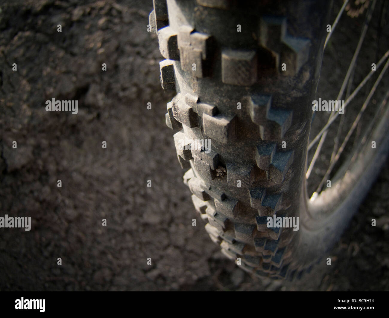 Bicycle Tire MTB - Stock Image