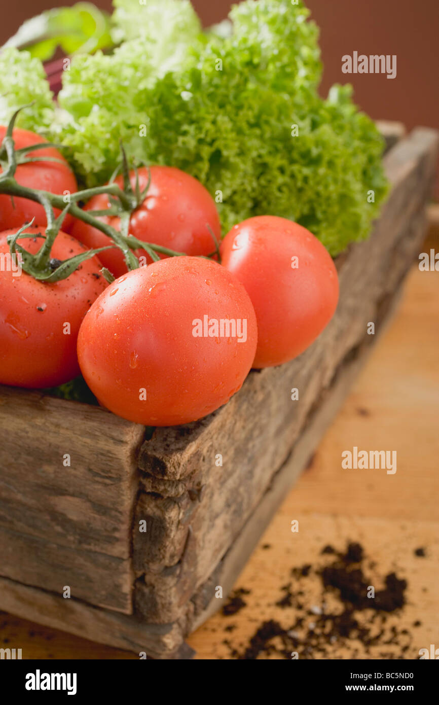 Fresh tomatoes and lettuce in wooden box - Stock Photo