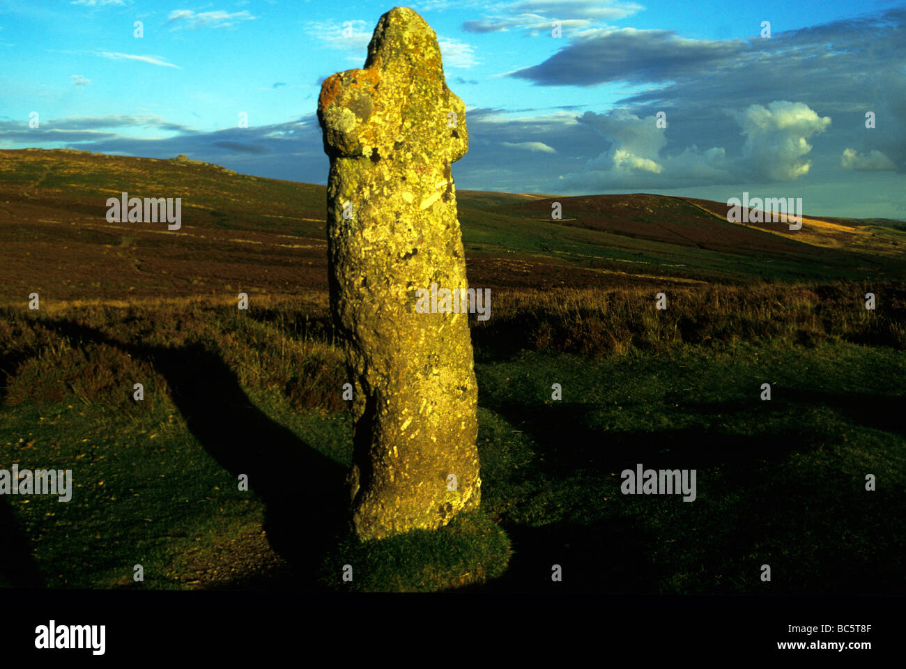Bennetts Cross in evening light. - Stock Image