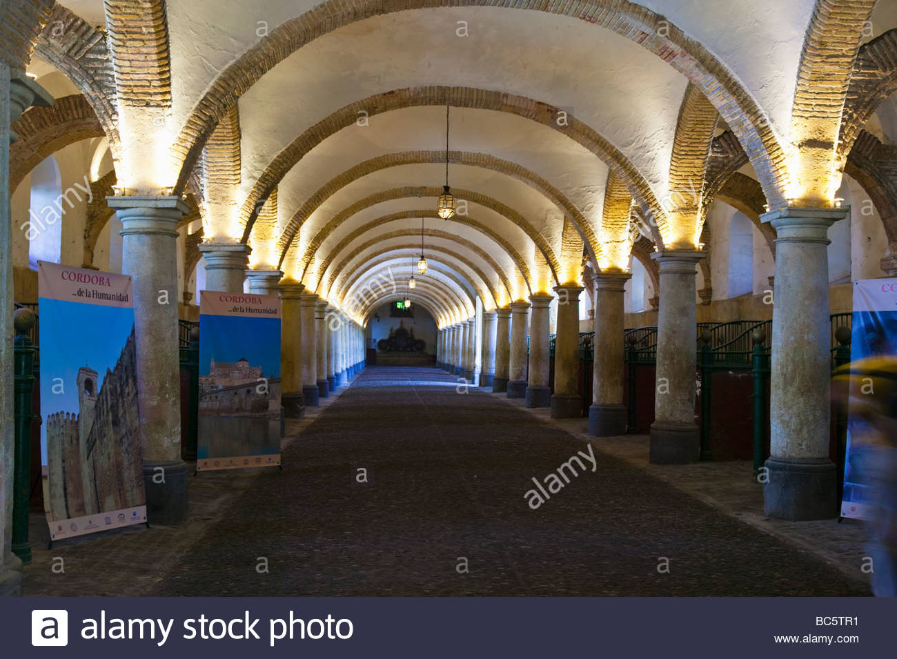 royal stables Cordoba Andalucia Spain - Stock Image