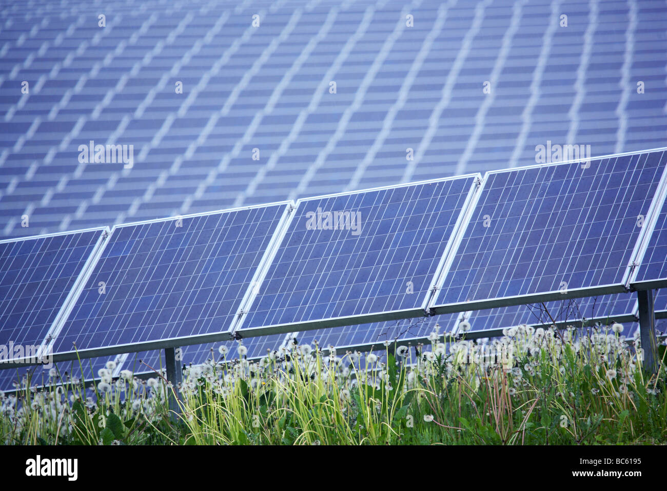 Solar panels in field Stock Photo