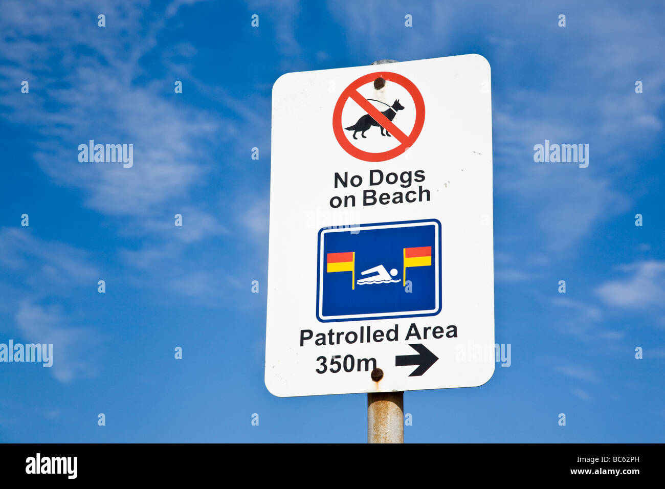 No Dogs on beach warning sign at Nobbys Beach Newcastle NSW Australia Stock Photo