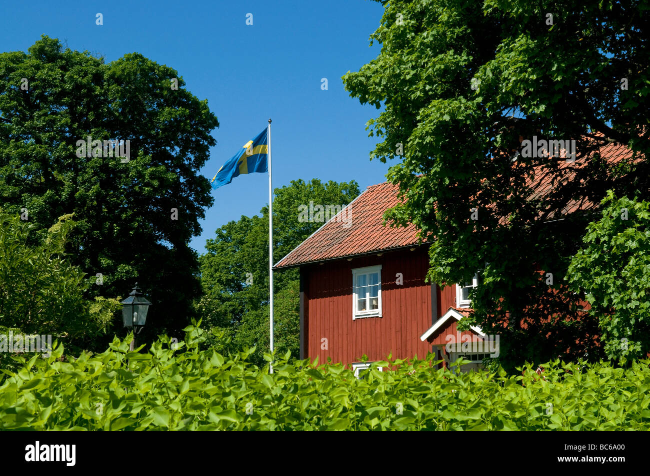 Summery image from Skuttunge, Sweden - Stock Image