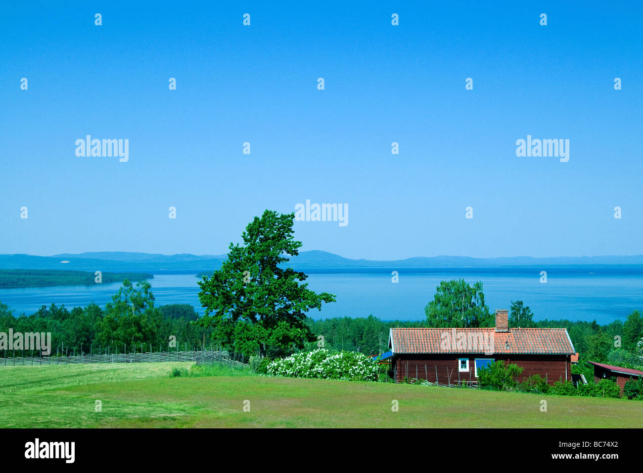 View over a Swedish lake with a red house and green areas in front - Stock Image