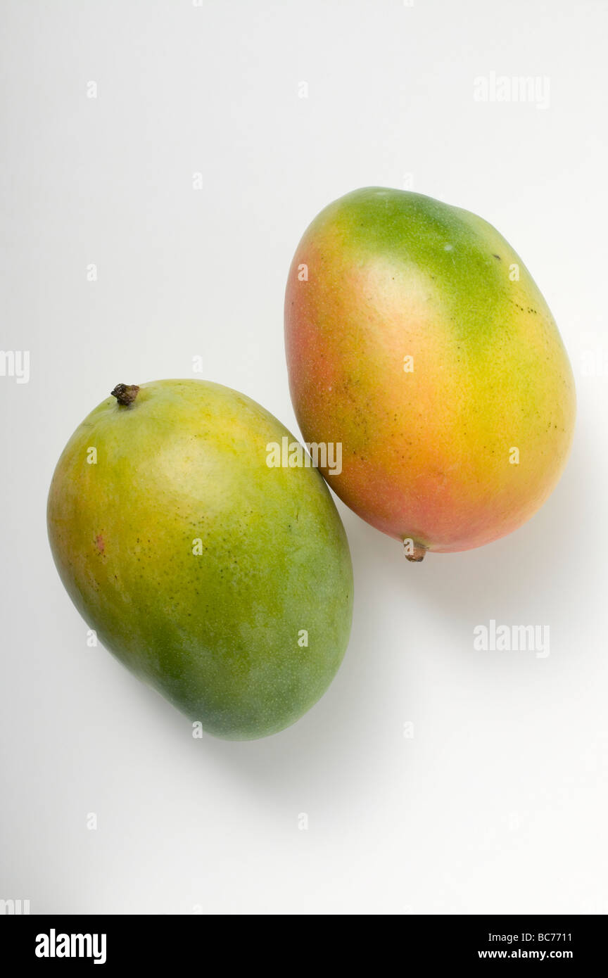 two-mangoes-dating-site