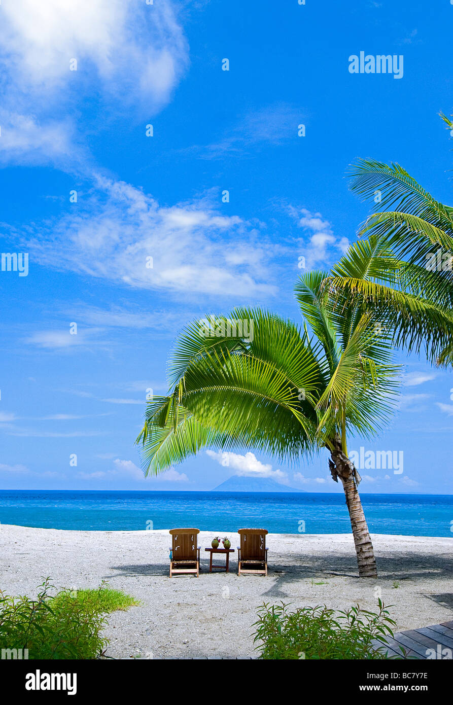 Two sunloungers on the beach under a palm tree in a Tropical Resort, Indonesia - Stock Image