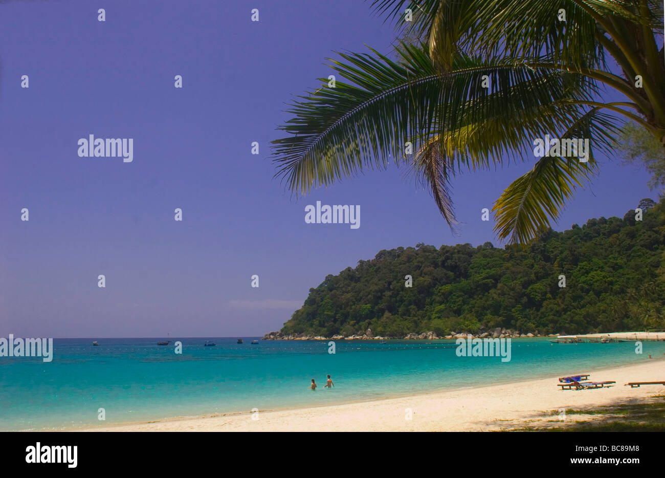 White sandy beach lined with palmtrees on Perhentian Islands - Stock Image