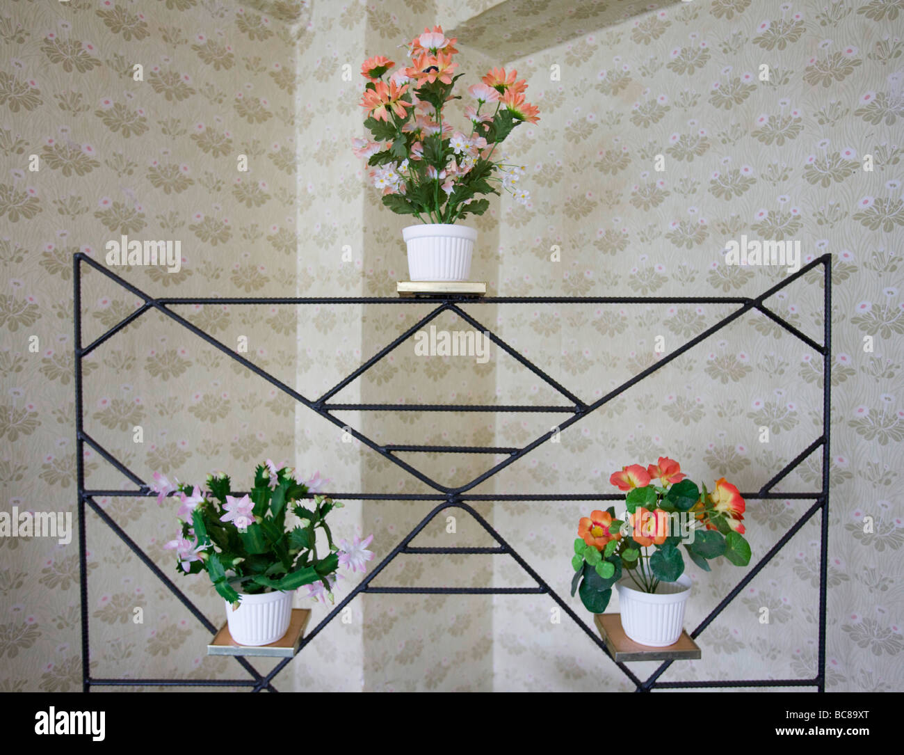 Plastic Flowers in a musuem Prora - Stock Image