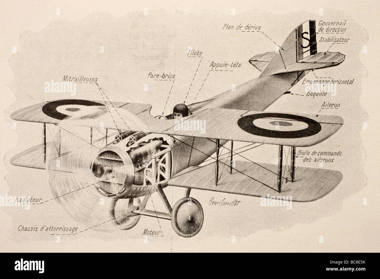 SPAD fighter plane of the French air force with two machine guns - Stock Image