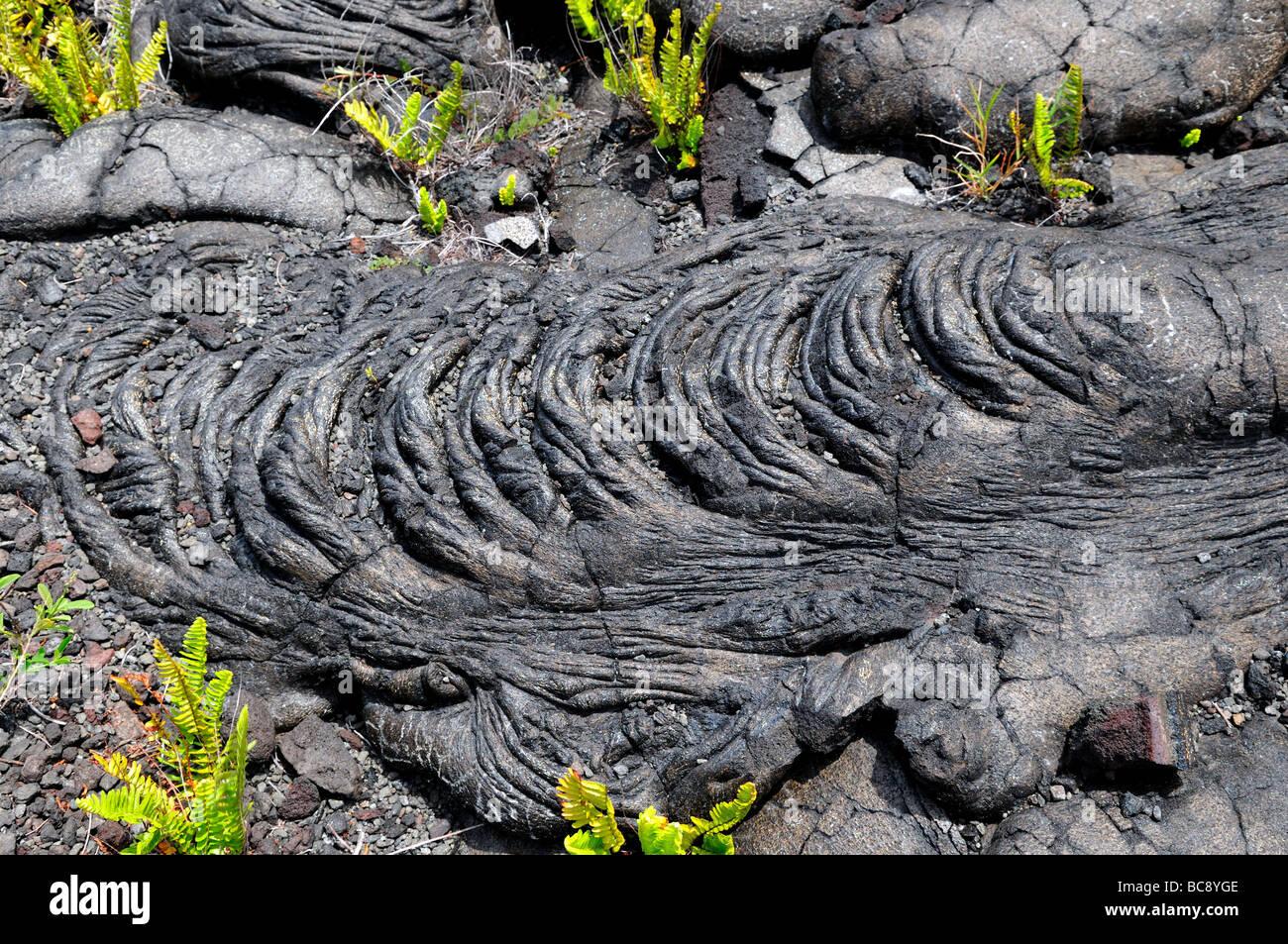 Basalt lava flow, Hawaii, USA. - Stock Image