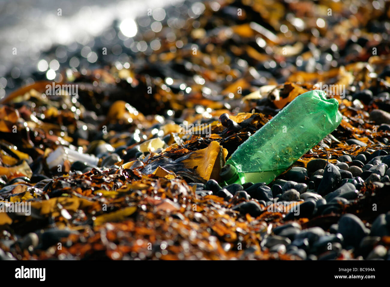 Turning back the plastic tide. Discarded plastic bottle on Penzance beach - Stock Image