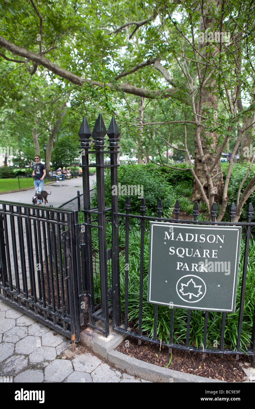 Madison Square park in NYC - Stock Image