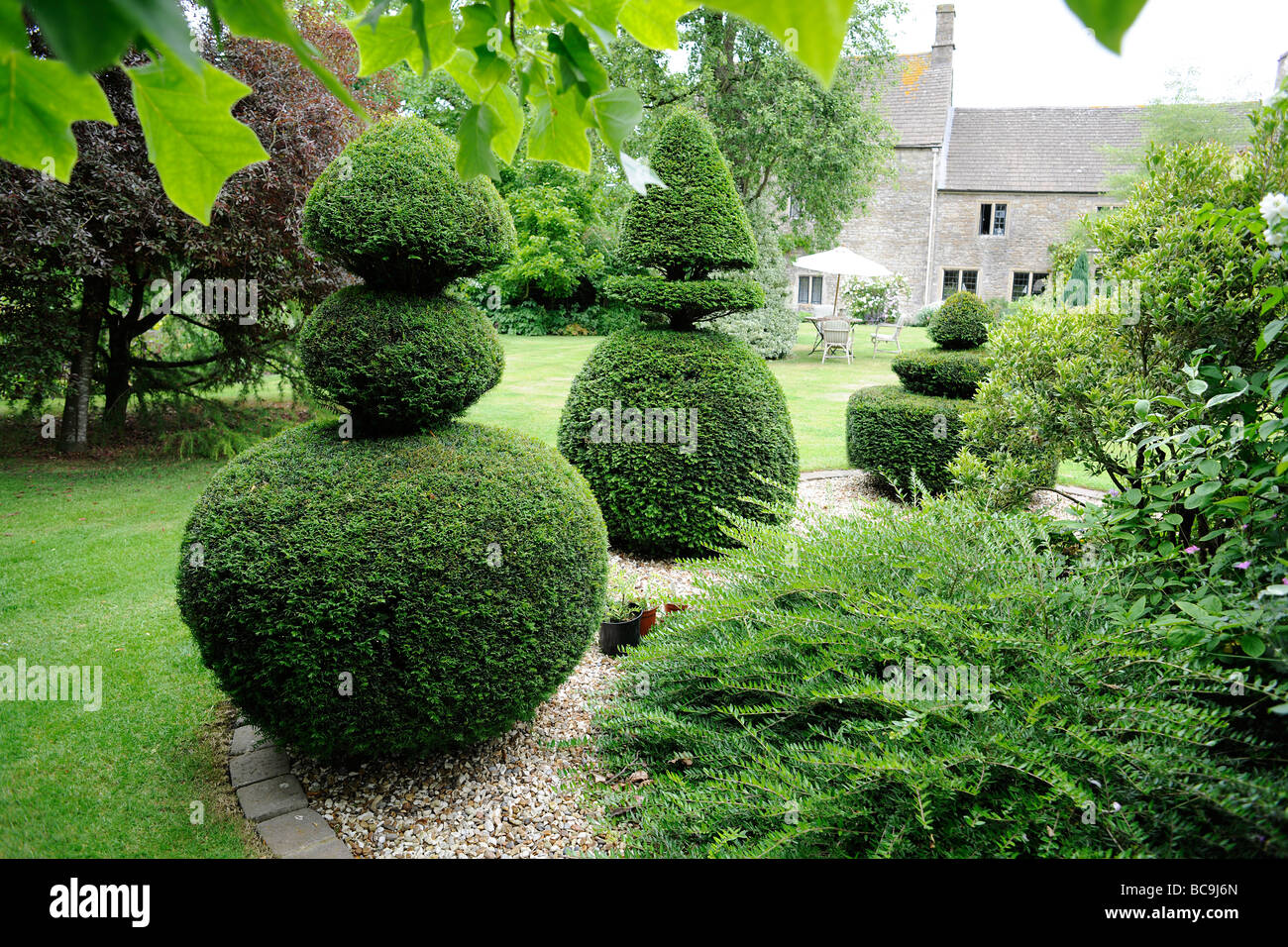 Topiary and in an English Garden in Somerset, UK - Stock Image