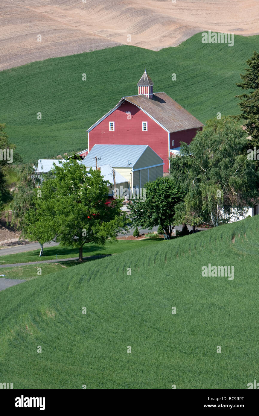 Whitman County, Palouse Country, Southeastern Washington State. Red Barn, Trees, Wheat Fields, Rolling Hills. - Stock Image