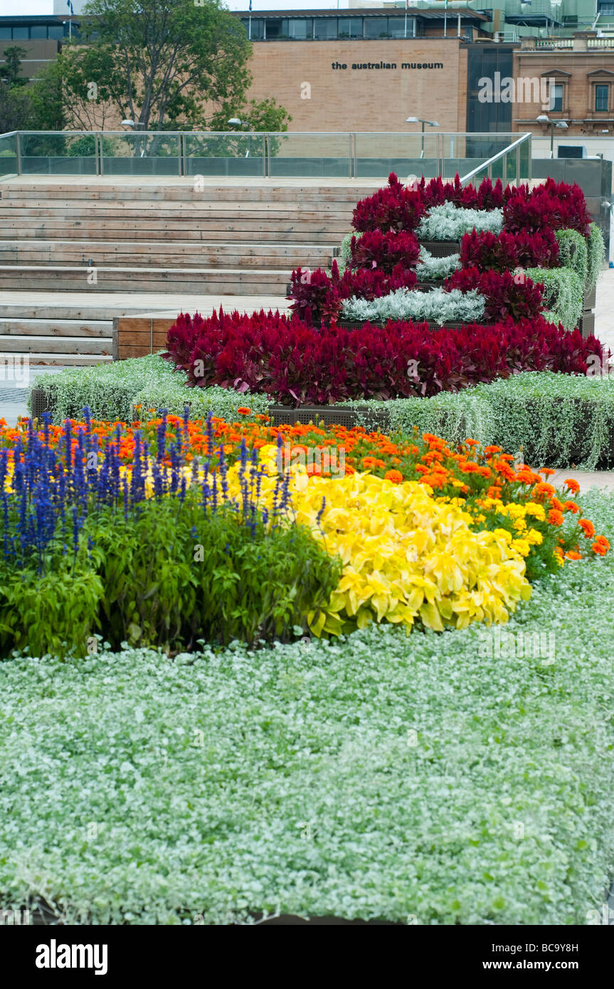 Australian Museum With Flowerbeds Of Salvia Marigold And Celosia