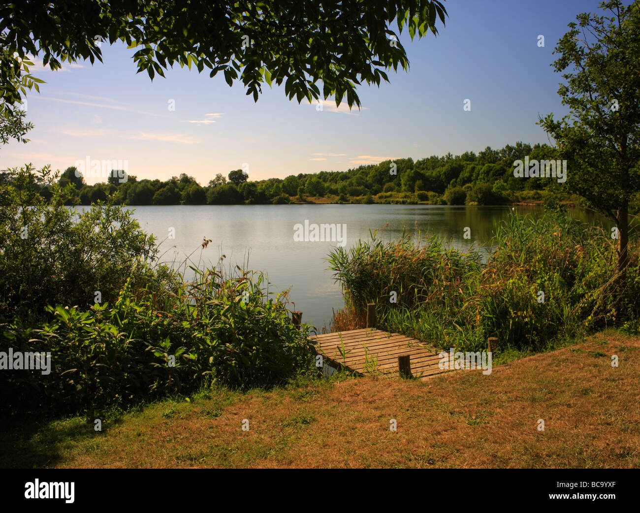 Lake. Haysden country park, Tonbridge, Kent, England, UK. - Stock Image