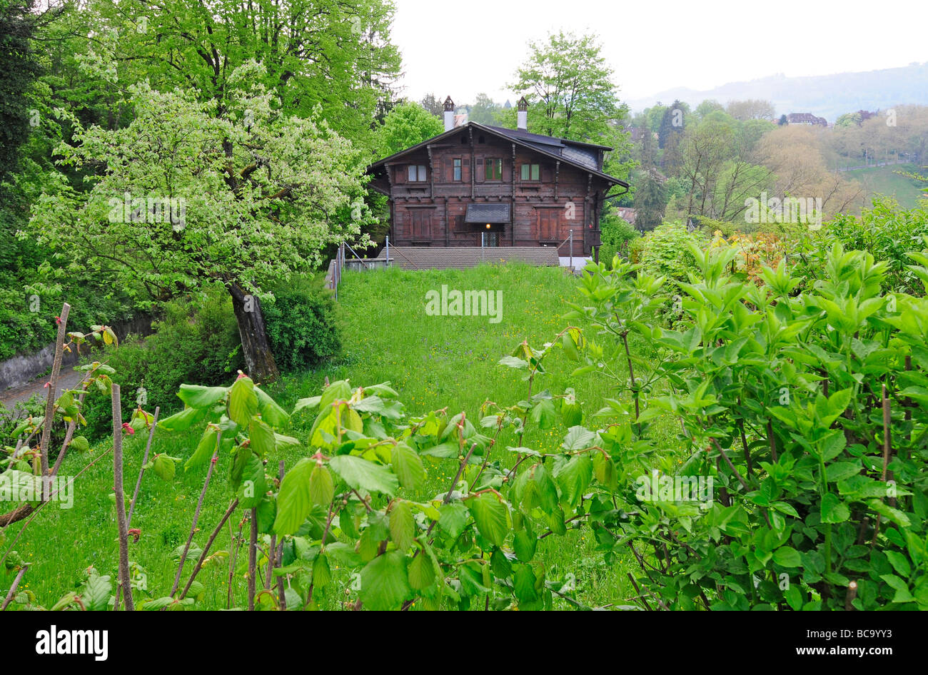 Natural landscape on the shore of the Aare river in Bern, Switzerland - Stock Image