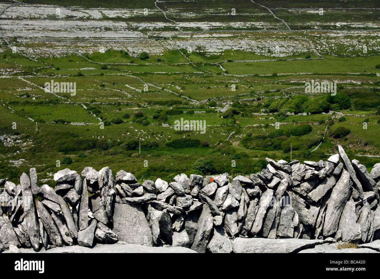 A view of a drystone wall and wall patterns in the Burren, Eire - Stock Image